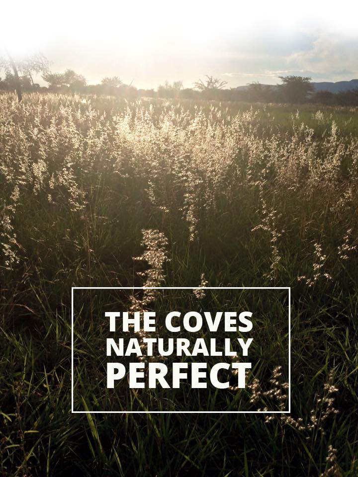 The Coves | Aviation and Lifestyle | Hartbeespoort Secure